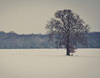 Winter 2013 / 1