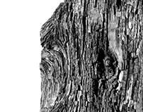 wood moves I