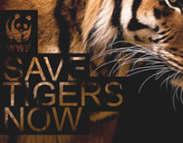 Save Tigers Now!