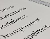 Typographic Basis