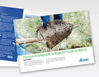 Carbon Sequestration brochure