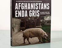 Afghanistans Enda Gris