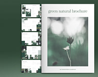 Green Natural Brochure Layout