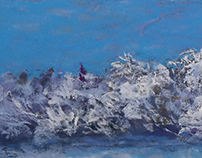 "Hoarfrost 1 - Pastel 23"" x 8"" for BnD Milton"