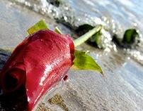 Photo series: Beach