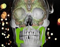 Skull Nights
