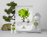 Tatacon / Dia da Árvore