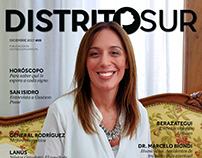 Revista Distrito Sur - Número 09, Diciembre 2017