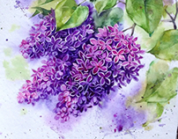 Lilacs in watercolor