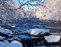 Winter Scenes, Wonders