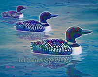 Loon Lagoon ~ Creatures of the Wild