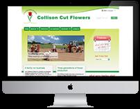 collisoncutflowers.co.uk