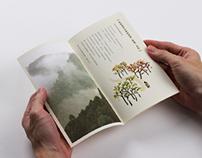 Orientea 茶籽堂|Print design