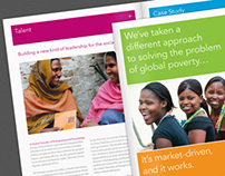Acumen Fund Nonprofit Brochure & Collateral