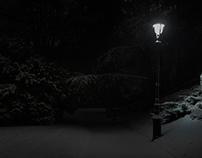 WALK BY NIGHT IN MONTSOURIS PARK / PARIS