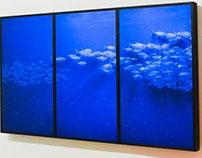 Interactive Aquarium - Cinimod Studio