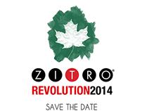 || Branding || Zitro Technologies