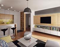 Interior for mini-student apartment