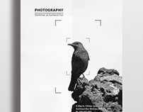 Poster & Flyer Design—Photography Workshop