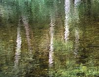 Pwllgolchi Reflections (1)