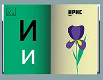 Alphabet in pictures (Азбука в картинках)