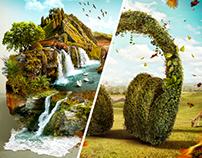 Natural World - Campaign