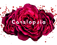 Online flower shop _ Cassiopeia