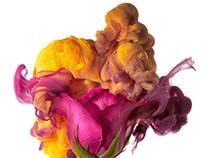 Aqueous blossoms