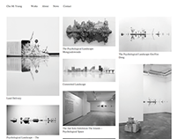 Website for Miyoung Cho