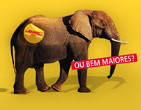 DHL (email marketing)