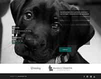 Webdesign - Titini