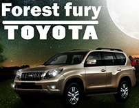 forest fury Toyota