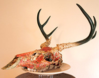 In the Backyard  // Genuine Deer Skull Sculpture