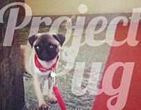 Project Pug