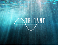 Project Tridant.