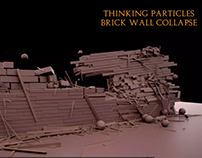 Brick Wall Collapse (TP)