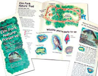 Brochure design for public park
