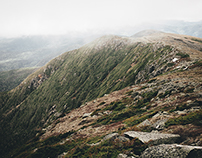 a few from the southern presidentials