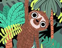 Genevieve the Jungle Sloth