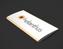 Helianthus - Branding