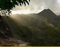 Kongs view