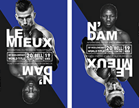 DAVID LEMIEUX VS HASSAN N'DAM