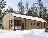Modern frame house