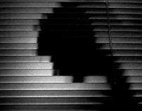 Linear Silhouette