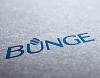 Bunge - Website Design Proposal - 2012