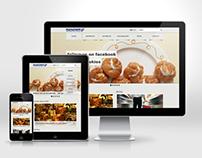 Marathon Distribution Group - Website Proposal - 2012