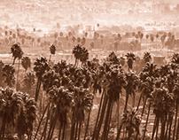 3 views of downtown L.A.