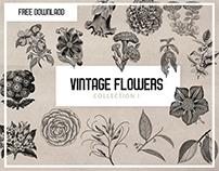 Vintage Flower Collection