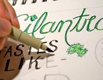 """""""Cilantro"""" Lettering Study"""