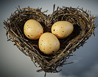 Loverbirds nest